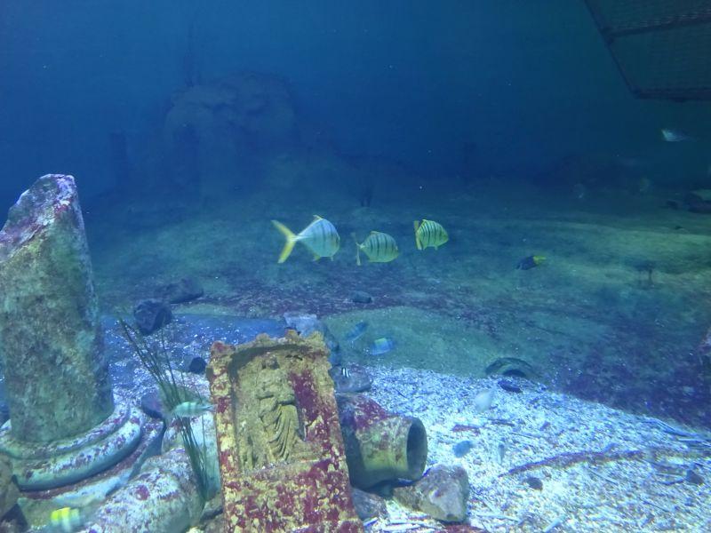 minicamper-kluithoek-zeeland-21