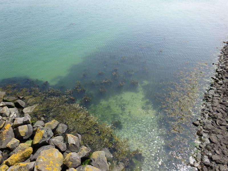 minicamper-kluithoek-zeeland-25