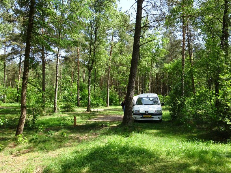 minicamper kamperen kootwijk zanderdennen