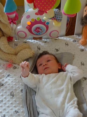 minicamper-lianne-geboort-14